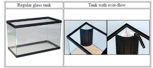 how to start a salt water tank